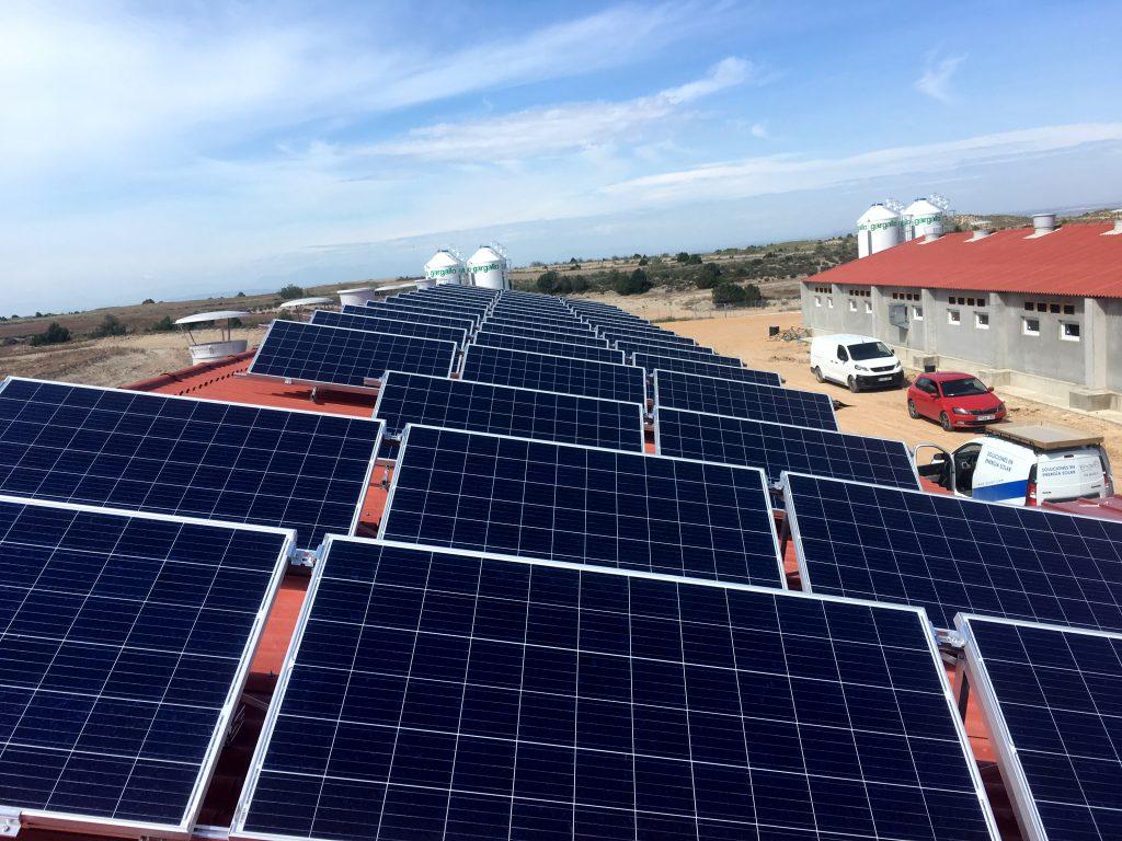 instalación fotovoltaica aislada en granja de cerdos
