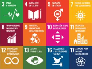ODS tranajados por ENDEF